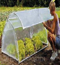 folienfr hbeet pflanzen f r nassen boden. Black Bedroom Furniture Sets. Home Design Ideas
